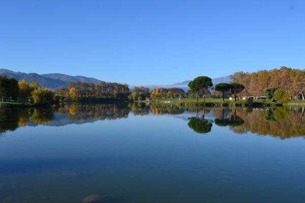 bearman-xtri-lake-swim